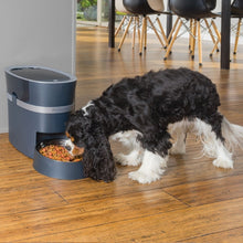Load image into Gallery viewer, Smart Feed Automatic Dog and Cat Feeder