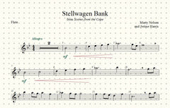 Stellwagen Bank Solo for Flute and Piano