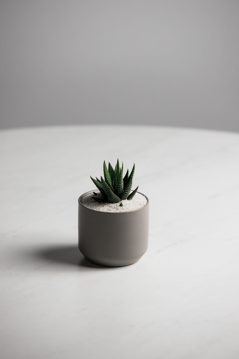 Grey Kendall Pot