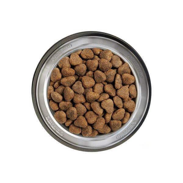 Belcando-Junior-medium-large-breeds- Lamb-Rice-4kg-Dogs food-Whiskers Nation