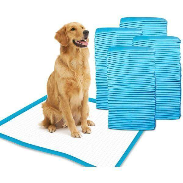Dog training pads- 60 Pieces- Large size-Groom-Whiskers Nation