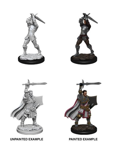 Nolzur's Marvelous Unpainted Miniatures - Male Human Paladin