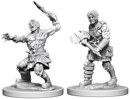 Nolzur's Marvelous Unpainted Miniatures - Nameless One