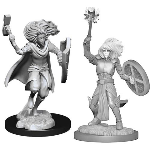 Nolzur's Marvelous Unpainted Miniatures - Changeling Cleric Male