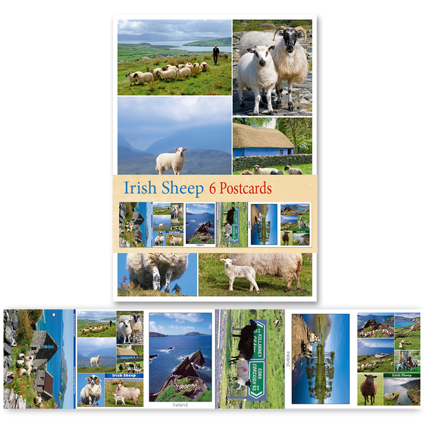 Irish Sheep - Pack of 6 Postcards