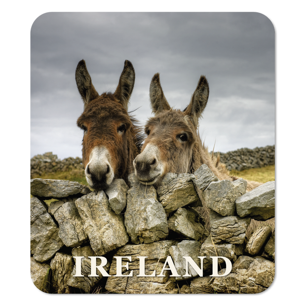 Donkeys and Dry Stone Wall Coaster
