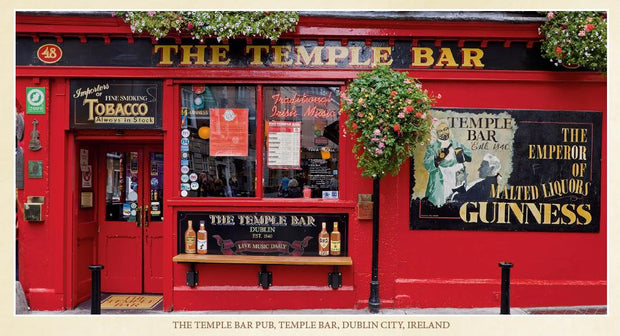 Temple Bar Pub Pin-Up