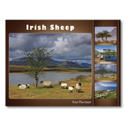 Irish Sheep Placemats