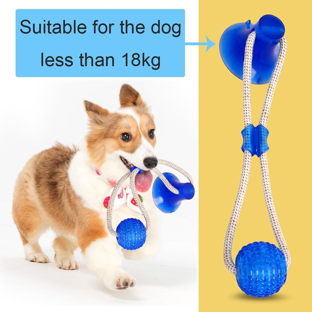 Multifunction Pet Molar Bite Dog Toys Rubber Chew Ball Cleaning Teeth Safe Elasticity TPR Soft Puppy Suction Cup Biting Dog Toy - ObeyKart