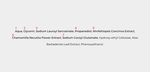 The ingredient list of the Gentler Cleanser, a mild face wash by Five to Five