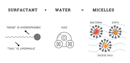 Illustration of surfactants forming micelles in water