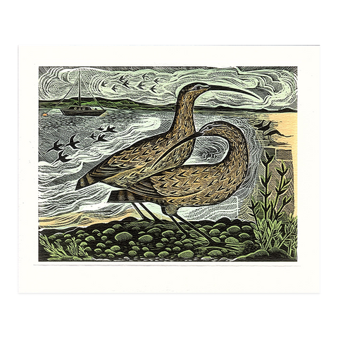 Angela Harding, 'Two curlews on the Deben'