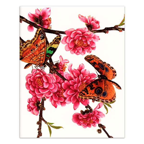 John Reeves, 'Butterflies and blossom'