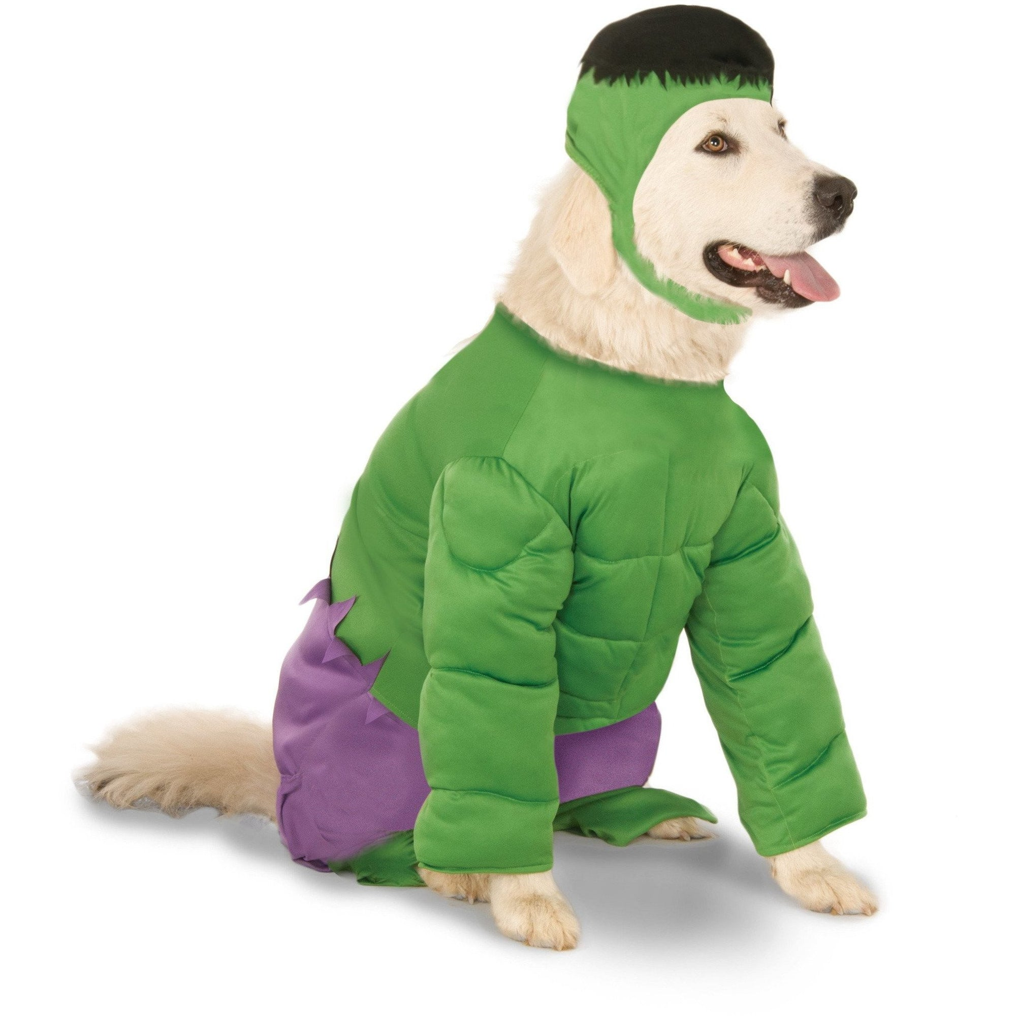 Big Dog The Hulk Costume