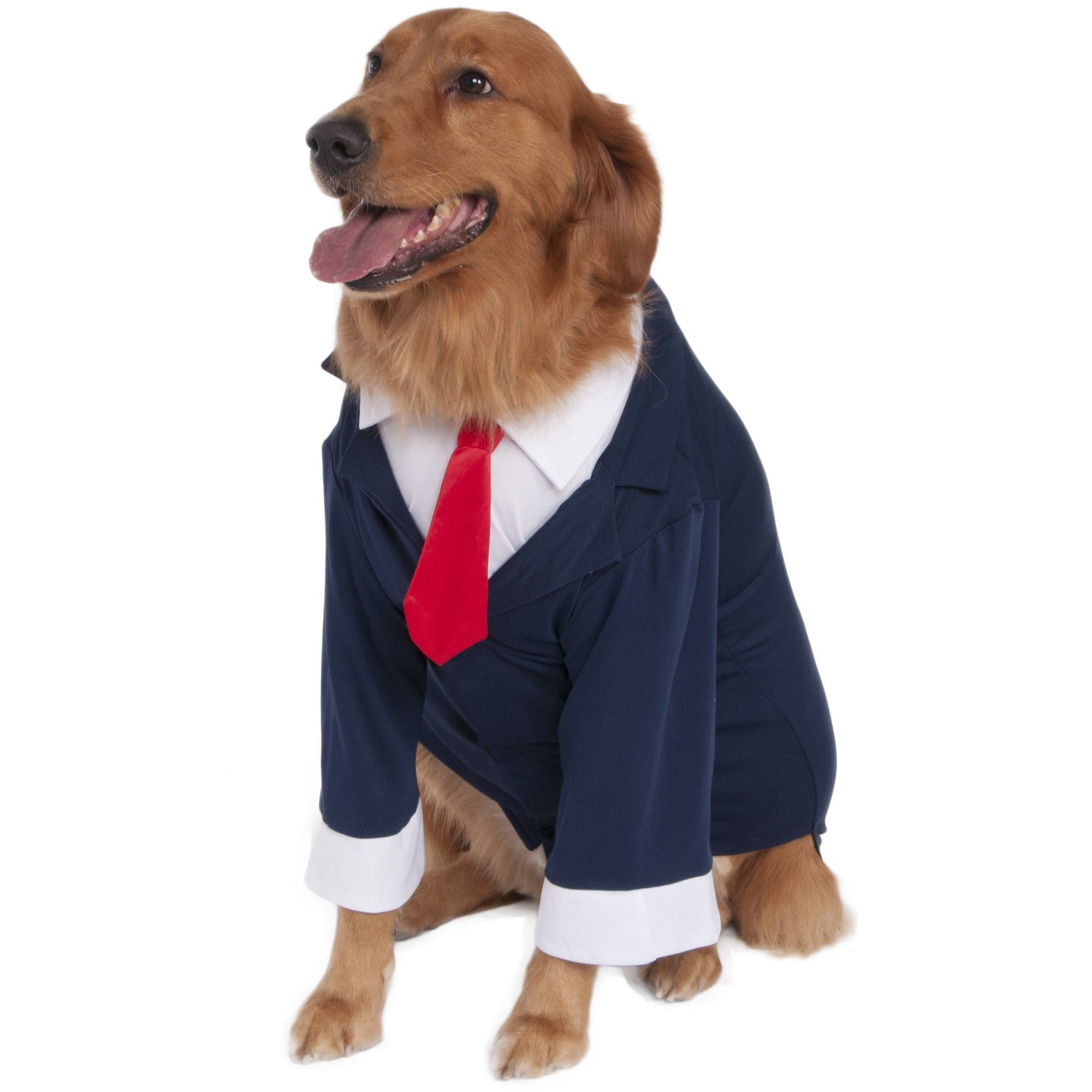 Big Dog Business Suit Costume