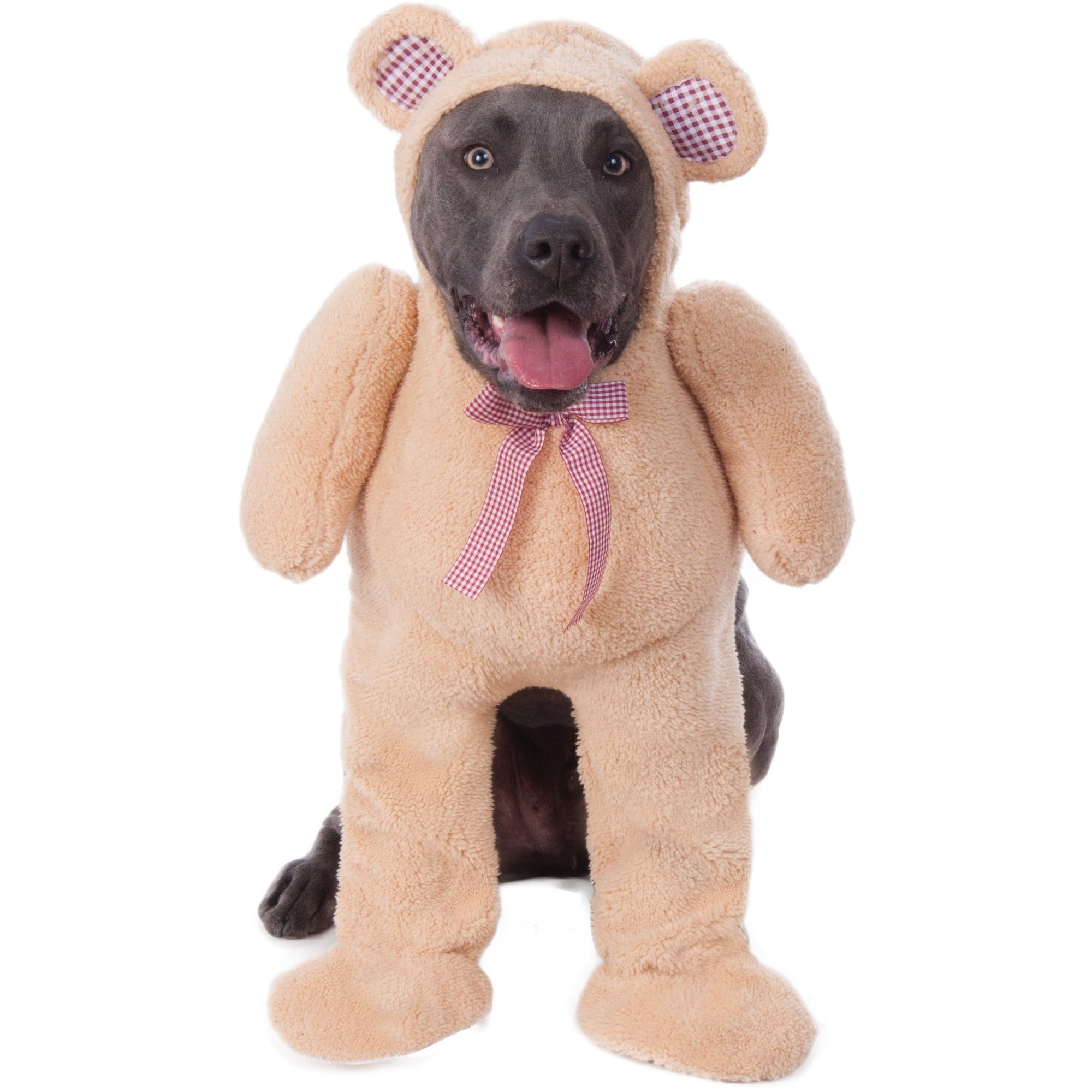 Big Dog Walking Teddy Bear Costume