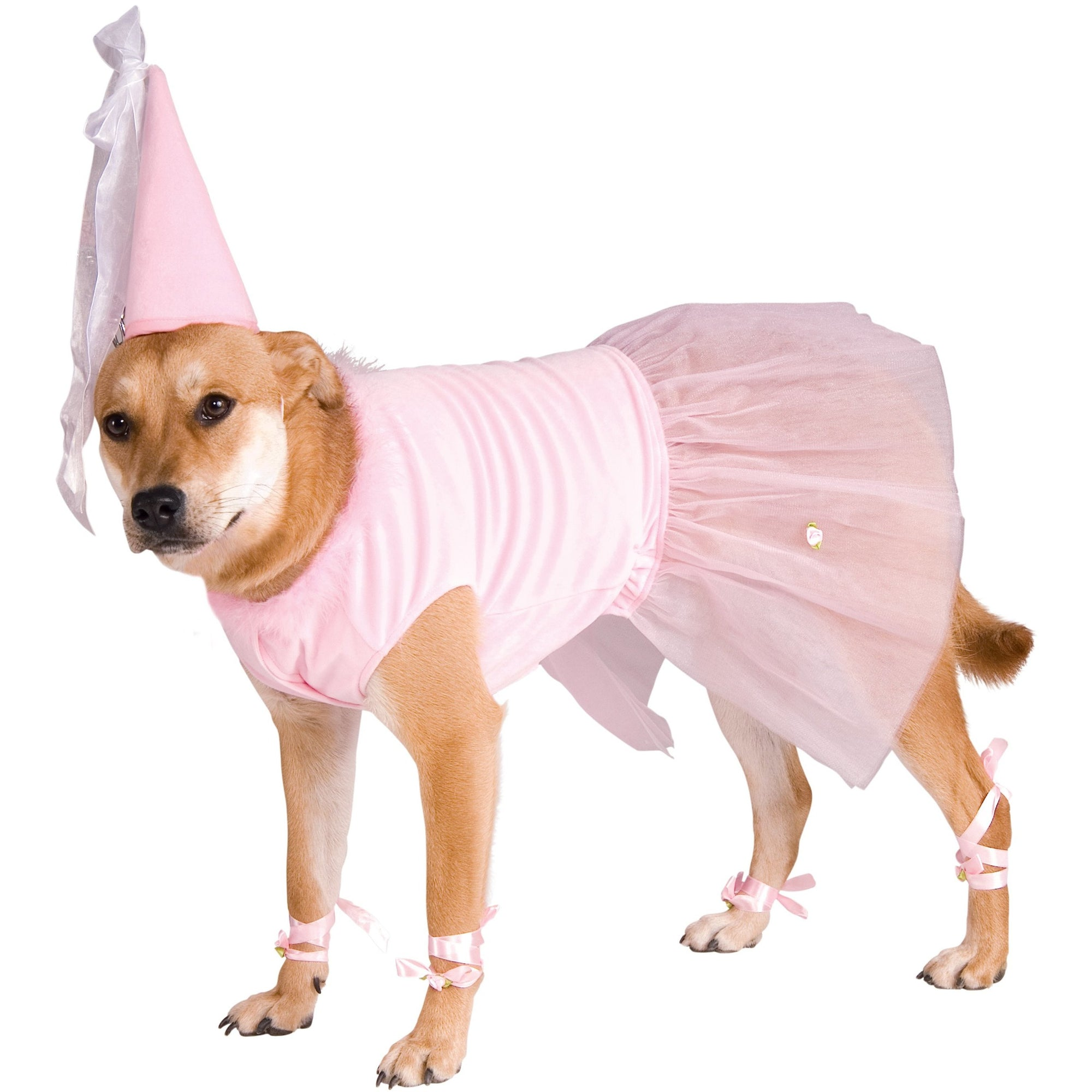 Big Dog Princess Costume
