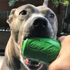 Soda Can Rubber Chew Toy & Treat Dispenser