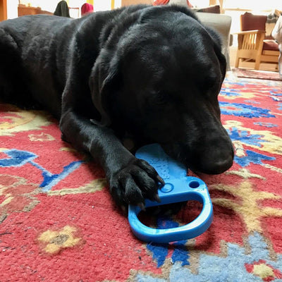 Pull Tab Ultra Durable Nylon Chew Toy