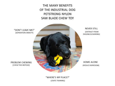 Saw Blade Ultra Durable Nylon Chew Toy