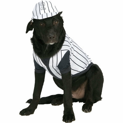Black Pinstripe Baseball Player Dog Costume
