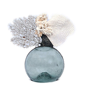 Vintage Float with Sea Fan & White Coral