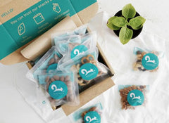 BoxGreen Gift Box