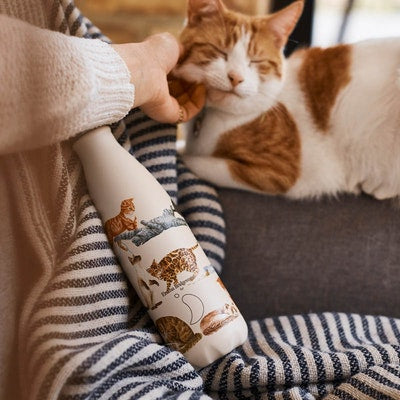 Emma Bridgewater - Cats (500ml)