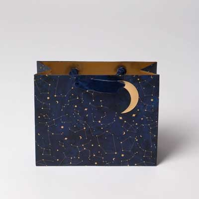 Constellations Gift Bag- Landscape