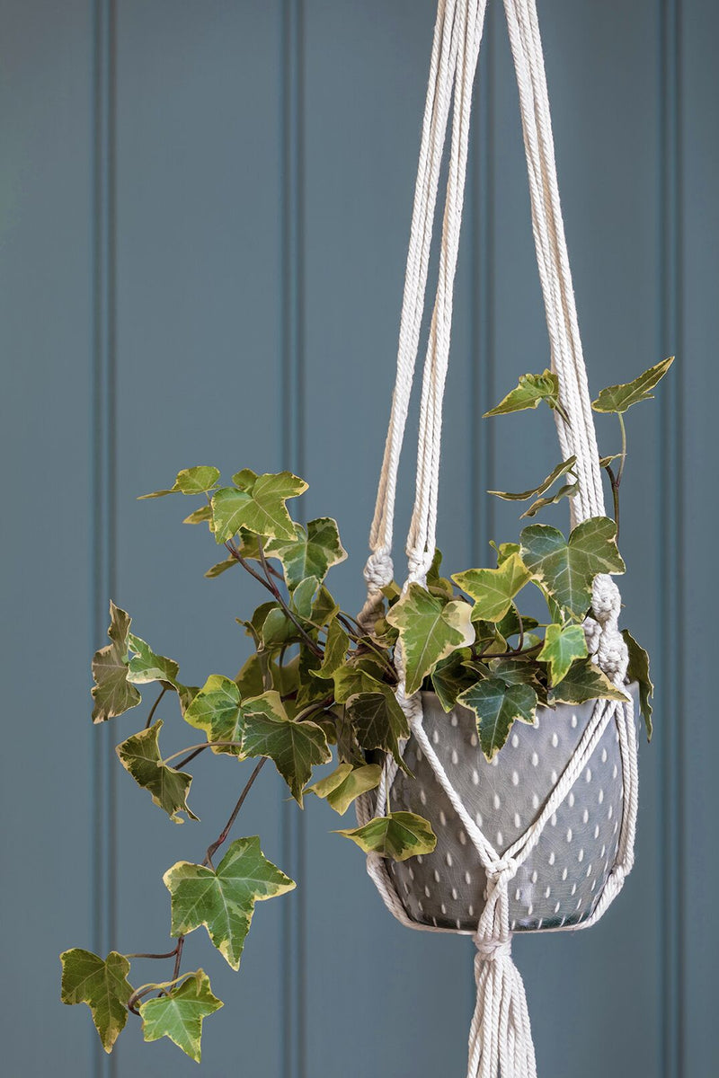 Macramé Hanging Pot - Indoor Plant Pot