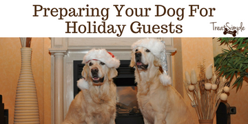Preparing Your Pets For Holiday Company