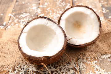 The Benefits of Coconut to Dog's Health