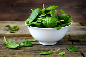 The Health Benefits of Spinach for Dogs