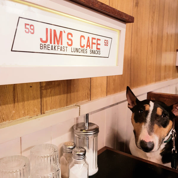 Eat out to help out. Make it dog friendly too!