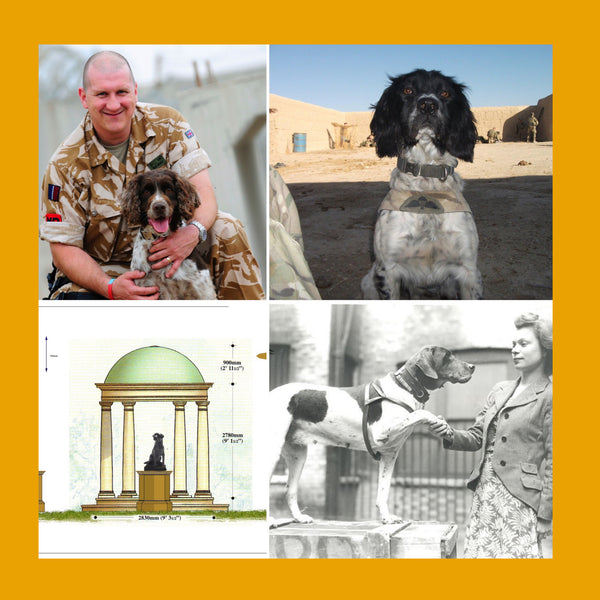 'Lest We Forget' New memorial set to commemorate dogs that have served in our Armed Forces.
