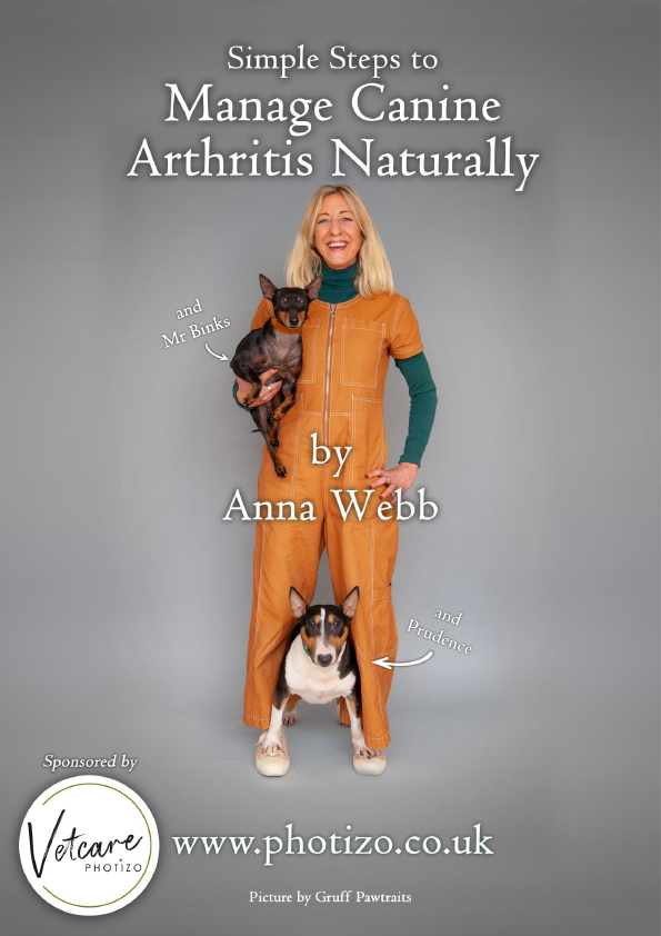 Manage Canine Arthritis Naturally