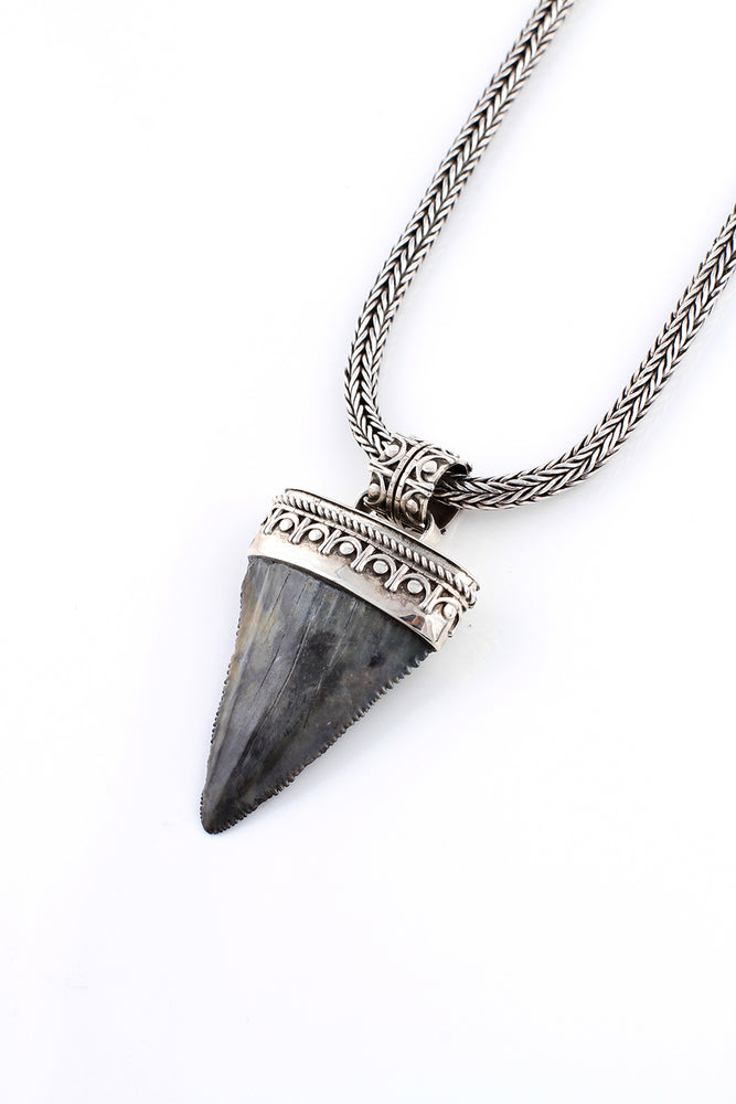 Large Fossilized Great White Shark Tooth Pendant