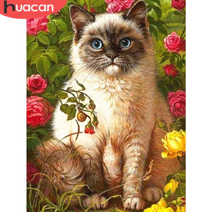 Siamese Cat Blue Eyes 5D Rhinestone Painting DIY Full Drill Select Square Round Diamonds Arts Crafts Embroidery Inlay Diamond Painting Home Decor