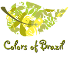 Golden Grass Brazil Nature Inspired Jewelry