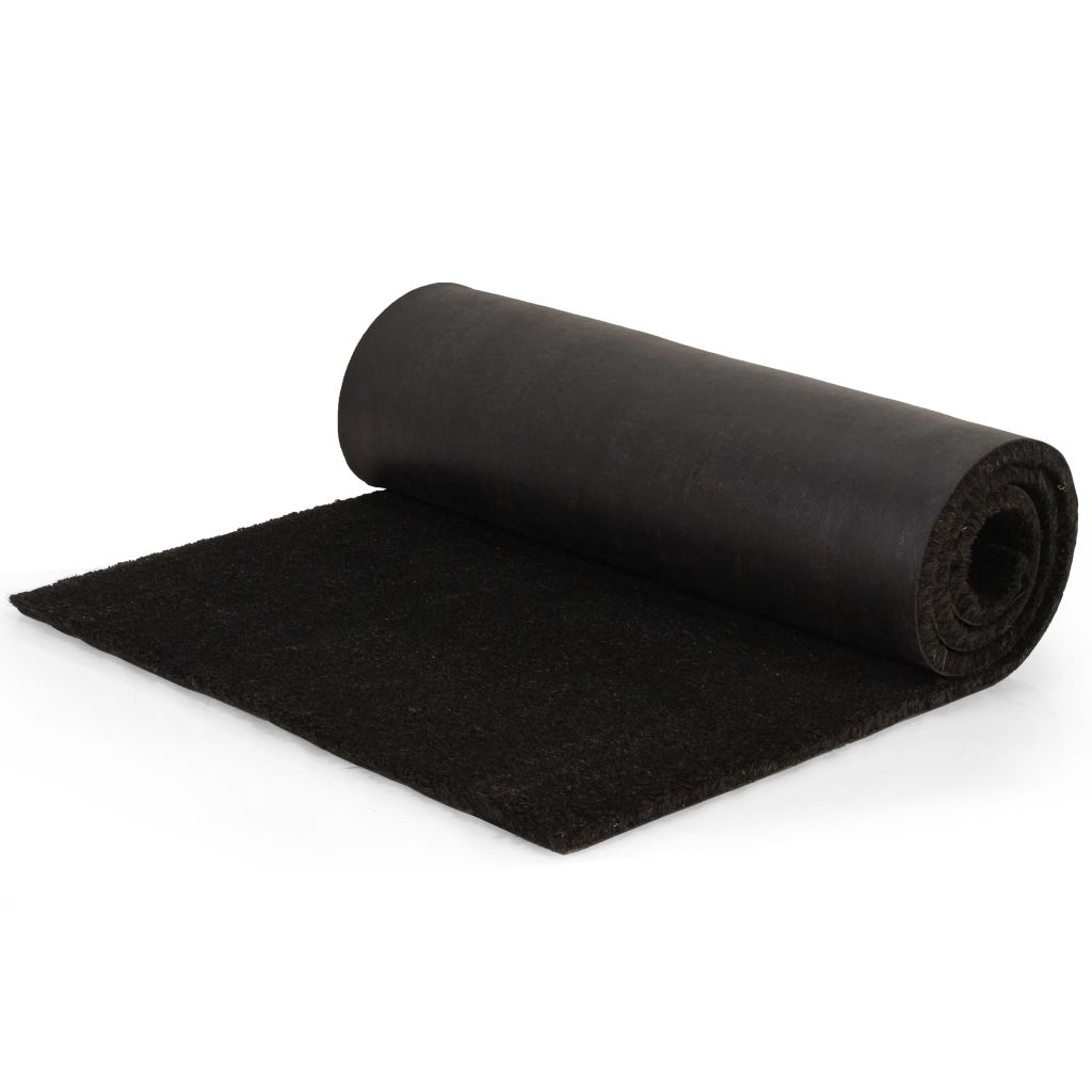 Doormat Coir 24 mm 100x150 cm Black