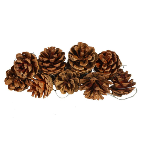 Decorative Pinecones 10 pcs