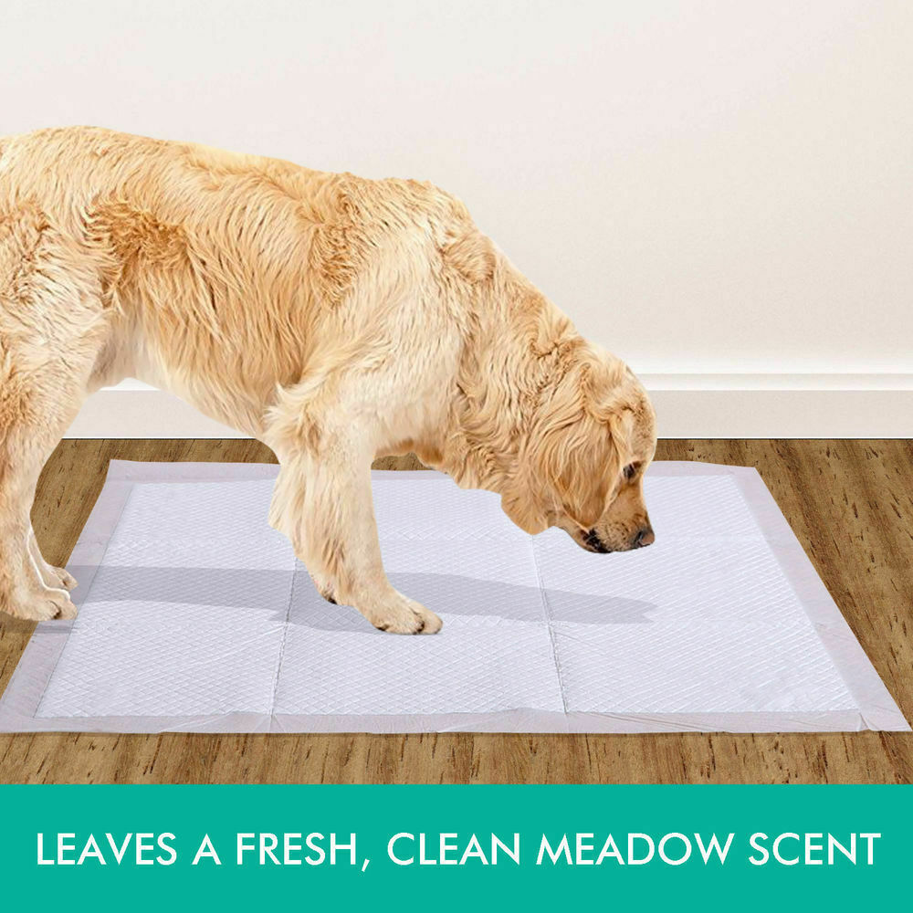 PaWz 400 Pcs 60x60 cm Pet Puppy Dog Toilet Training Pads Absorbent Meadow Scent