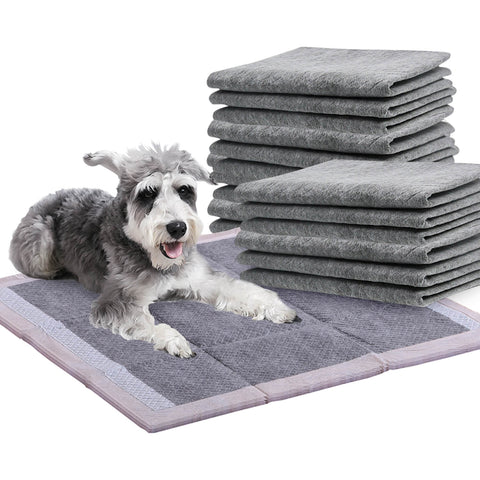PaWz 50 Pcs 60x60cm Charcoal Pet Puppy Dog Toilet Training Pads Ultra Absorbent
