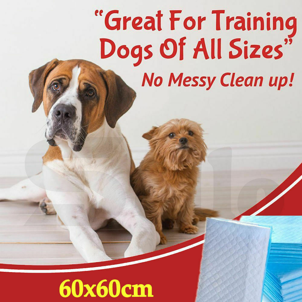 PaWz 400pcs 60x60cm Puppy Pet Dog Indoor Cat Toilet Training Pads Absorbent New