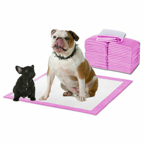 PaWz 400pc 60x60cm Puppy Pet Dog Indoor Cat Toilet Training Pads Absorbent Pink
