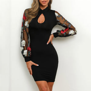 Elegant Long Sleeve Evening Party Club Ladies Dresses