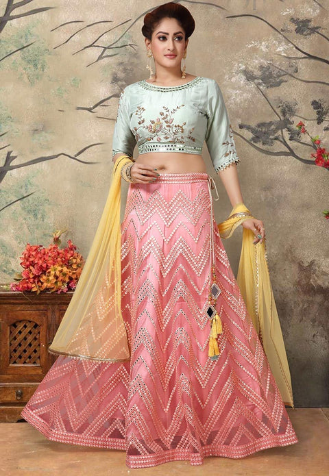 Hand Embroidered Net Lehenga in Peach