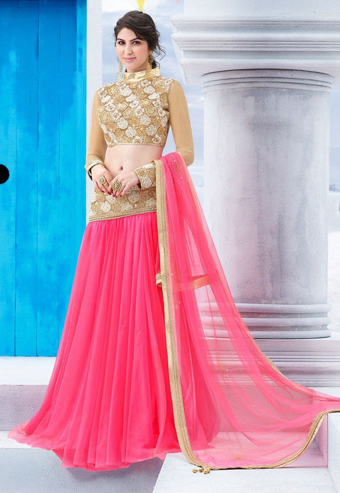 Embroidered Waist Net Lehenga in Pink