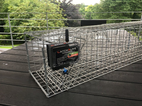 CatchAliveOne trap alarm incl. marten trap with 2 entrances and 1 year subscription