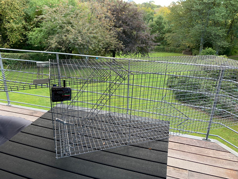 CatchAliveOne trap alarm incl. fox trap and 1 year subscription